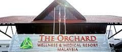 THE ORCHARD WELLNES & MEDICAL RESORT